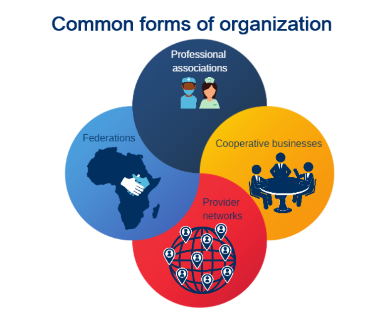 An infographic of common forms of organization: professional associations, federations, cooperative businesses, and provider networks.